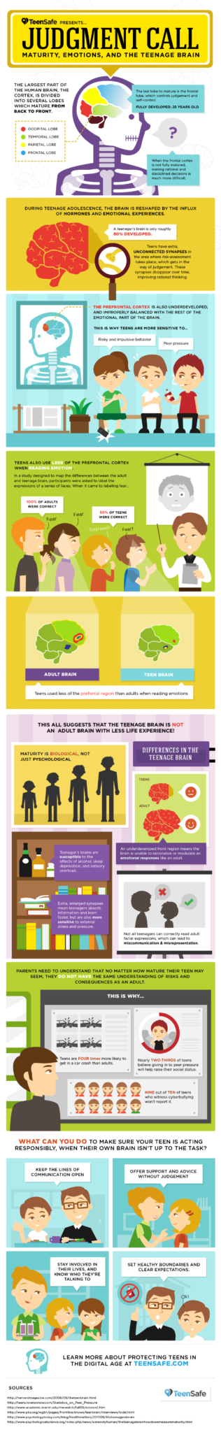 teen-brain-infographic